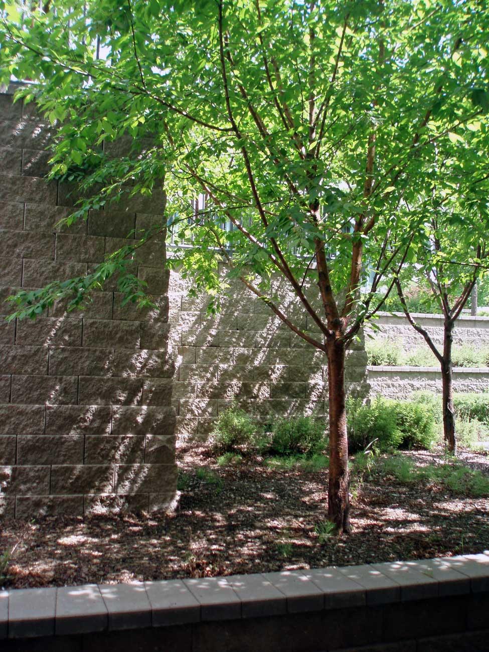 SAIT cornerstone retaining walls