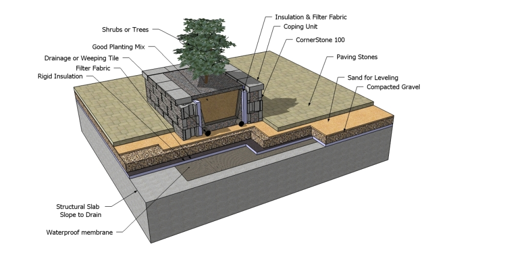 Green Roof Cross Section