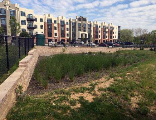 Bottling Plant Apartments' Retaining Walls